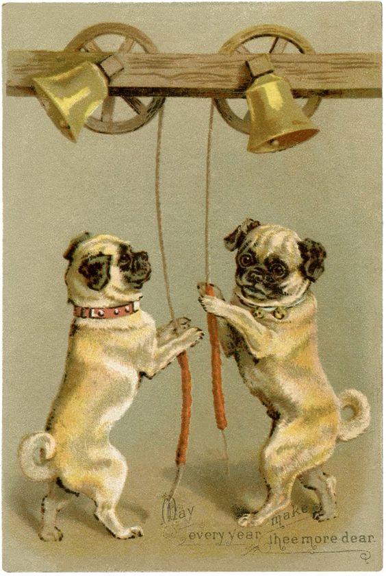 这个哈巴狗股票插图是一个旧的古董贸易卡!上面显示的是2个可爱的帕格狗敲响了一对铃声。
