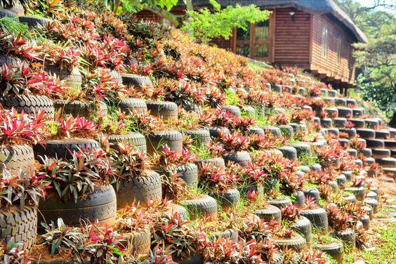 为您的院子,天井或走道提供有趣而富有创意的29花轮轮播种机构想法。用这些创造性的想法在你的院子里染上一些颜色。