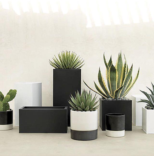 黑色播种机正方形和现代。防护用于室内和室外环境,亚光抛光镀锌钢板起到精致的工业和戏剧效果。