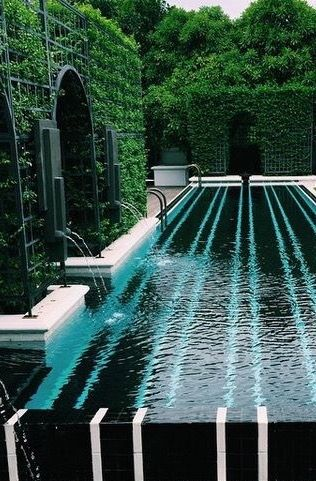 Pool surrounded by tall hedges and greenery. - Luxury Abodes