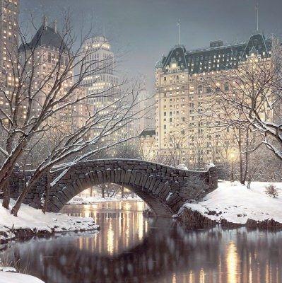 中央公园被雪覆盖着