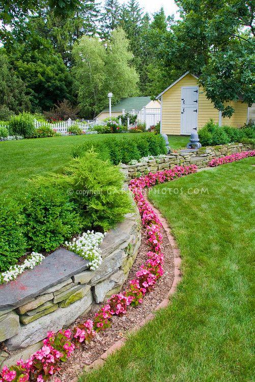 在篱笆前或衬砌房产。石墙上有粉红色的开花蜡质秋海棠,伊比利斯石墙顶上,常绿灌木,黄杨木,白色栅栏,花园棚,鸟屋,车库,漂亮的草坪草旁边的整洁砖边,步骤分层两级美化,处理前面的后院景观花坛的斜坡?