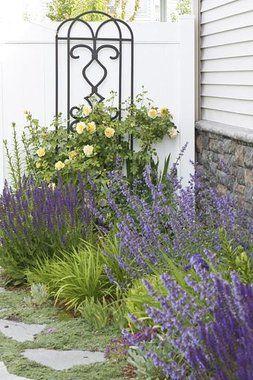看到最好的灌木和开花植物的图片放在你的基础上,这将增加你的家没有很多的维修美丽。