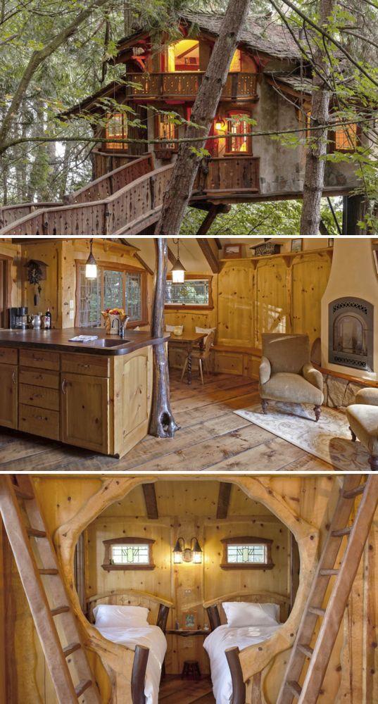 这间树屋配有两间卧室,一间厨房和一间浴室,是一个完美的高尚度假胜地。