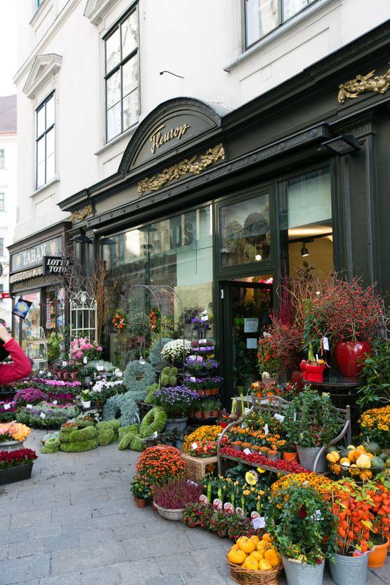 花店在维也纳奥地利