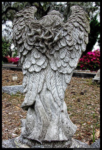 这个前种植园于1868年改建为公墓,原名为长荣公墓;它的名字于1907年更名为文德公墓。该墓地在约翰贝伦特的善恶花园中的午夜书中以及由克林特伊斯特伍德执导的电影中以其为基础成名。查看这个集合