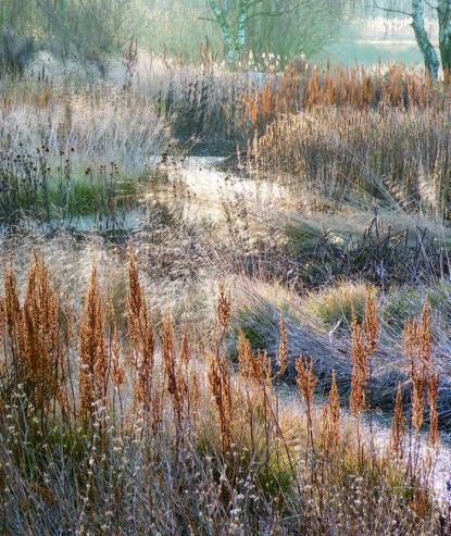 Planting- autumn and winter pic