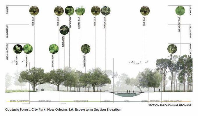 Landscape architecture section - Google Search #LandscapingArchitecture #landscapearchitectureportfolio