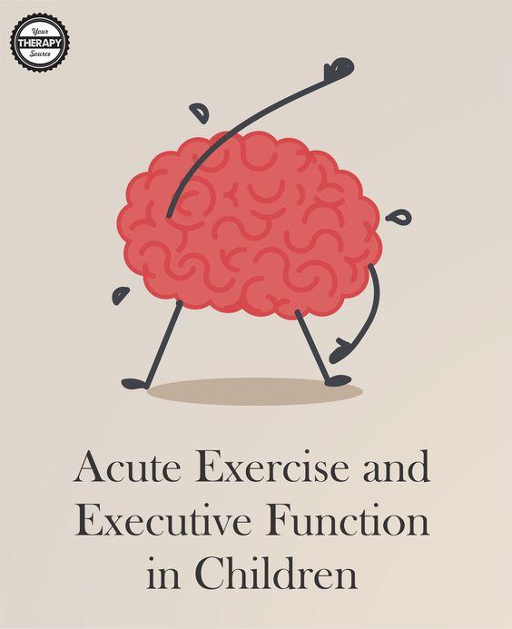 研究表明,急性运动可以改善儿童的执行功能。孩子们应该在学校参加体育活动。