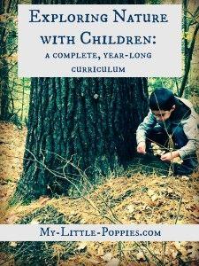 在家庭学校使用探索自然与儿童课程的提示和技巧,以及DIY自然探索包。
