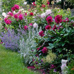 随着其休闲丰富的植物开放,非正式的外观,一个山寨风格的景观设计总是感觉像家一样。