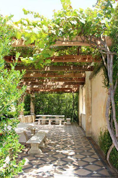 树木不是夏季唯一可以用来遮挡炎热,阳光充足的地区的植物。几个世纪以来,棚架,乔木和绿色隧道等结构已经被用来撑起形成阴影的葡萄藤。在这里了解如何使用藤本植物作为遮荫。