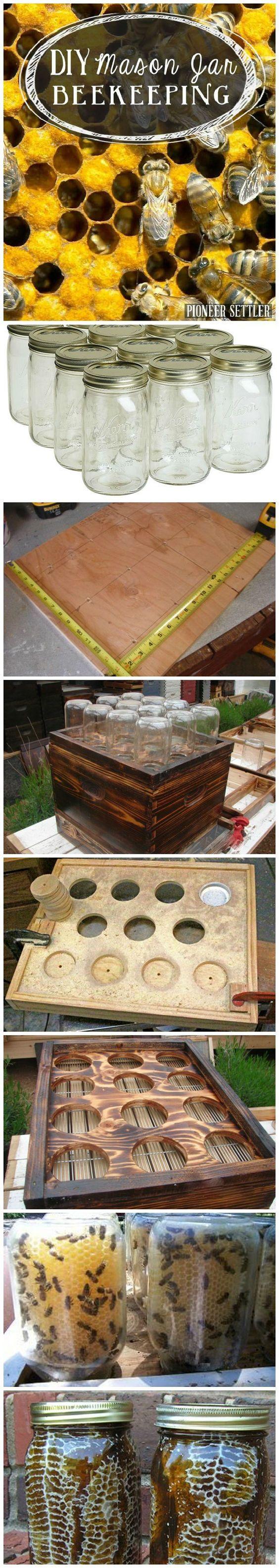 梅森罐养蜂是小空间的理想选择。按照这些简单,巧妙的步骤,在宅基地种植蜂箱。