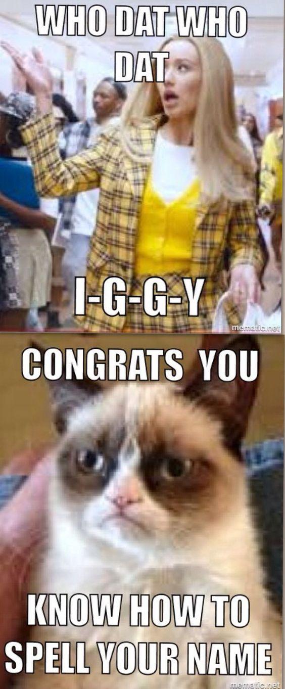 有点有趣的名人幽默。主演Iggy和脾气暴躁的猫。最好的流行文化,你不同意吗?