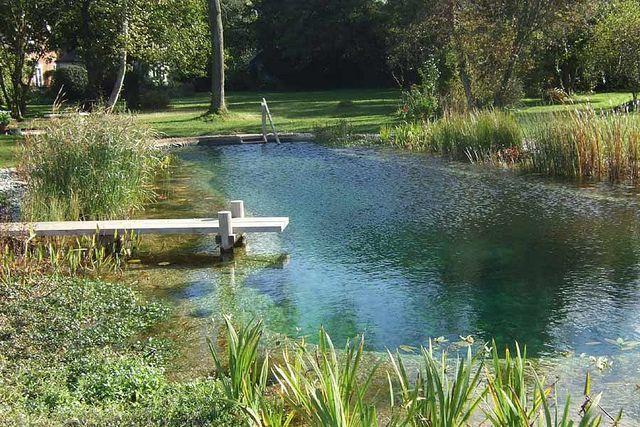 Man-made, natural swimming pond.