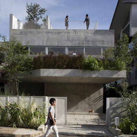 用植物里面和外面盖的具体房子。
