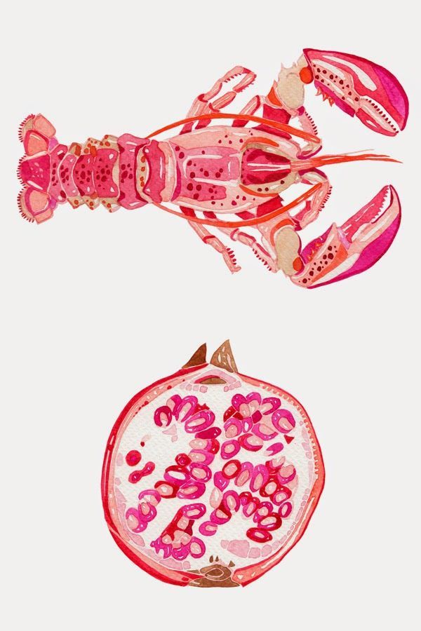 Watercolour Illustrations - Holly Exley Illustrator: Tropical Colours! | Watercolour Illustrations