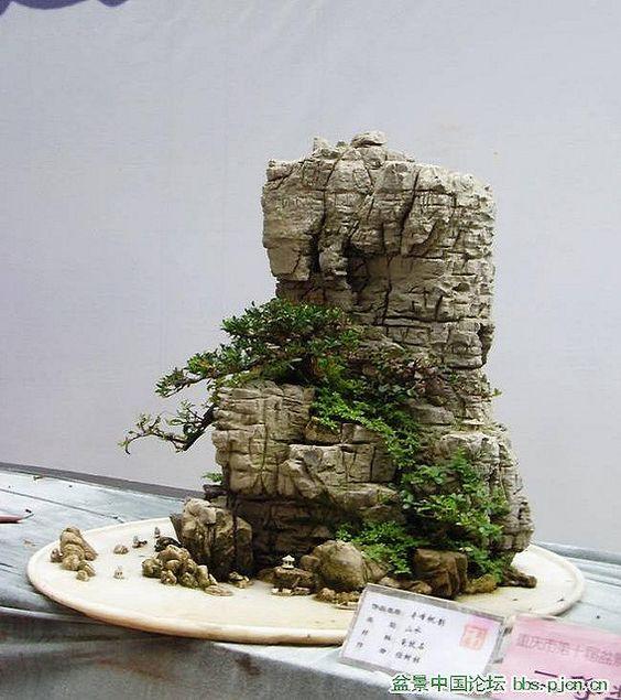 谢谢观看! 2009中国重庆盆景展。中国盆景报道后还有更多。资料来源:www.beijingbonsai.com/