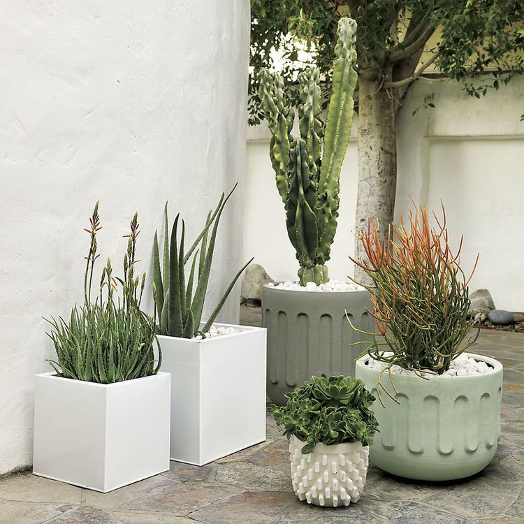 Go green outdoor or indoor with our new Embossed planters in mint and grey.