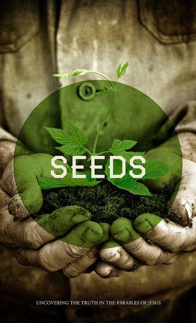 种子是一系列关于比喻的标题。
