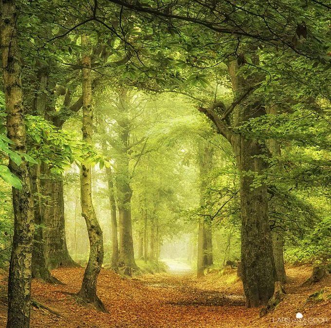 Enchanting, inviting, beautiful! (