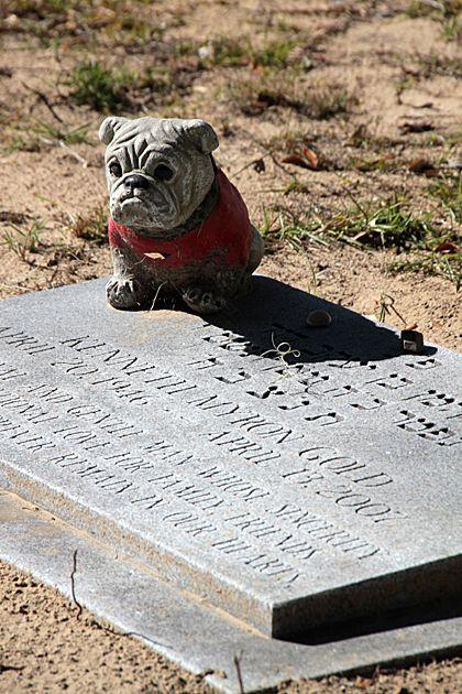 牛头犬坟墓,文德公墓,萨凡纳,格鲁吉亚