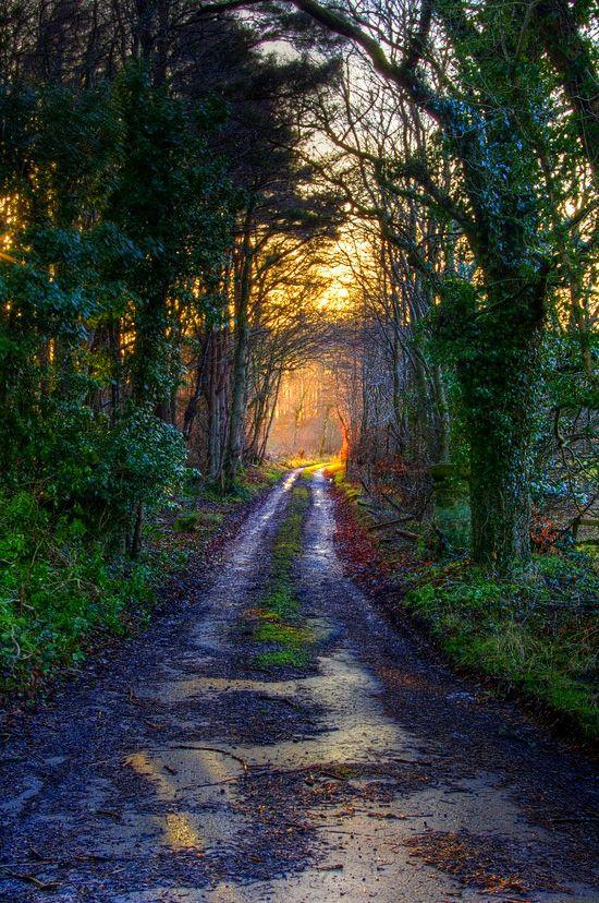 uk.youtube.com/watch?v=-6PIke8r51E&feature=related不是一个精彩的镜头,但我喜欢道路尽头的灯光和色彩。刚刚从少女路上走。艾尔郡,苏格兰。