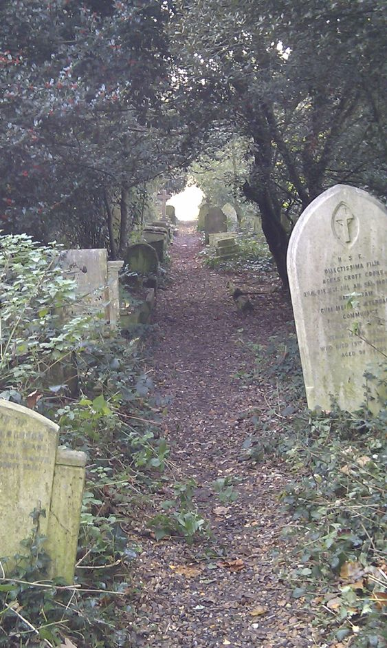 老巴恩斯公墓。
