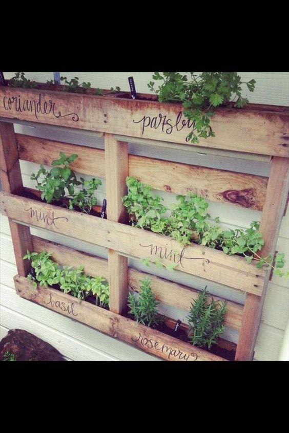 无论您的院子是大的,小的还是仅仅是一个阳台,这个不寻常的菜园理念清单都会涵盖在内,并让您的创意成果流动起来。