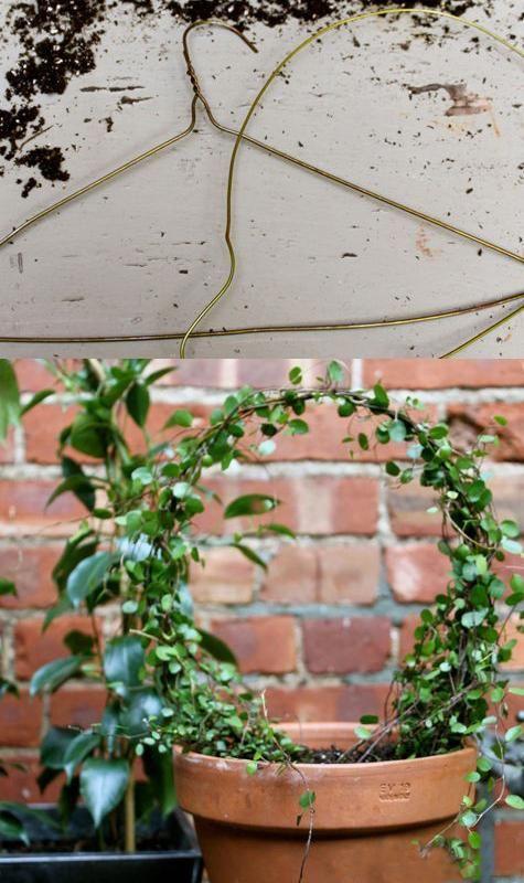 将金属线件转变成吊篮和花盆架的DIY后院创意简单而有趣