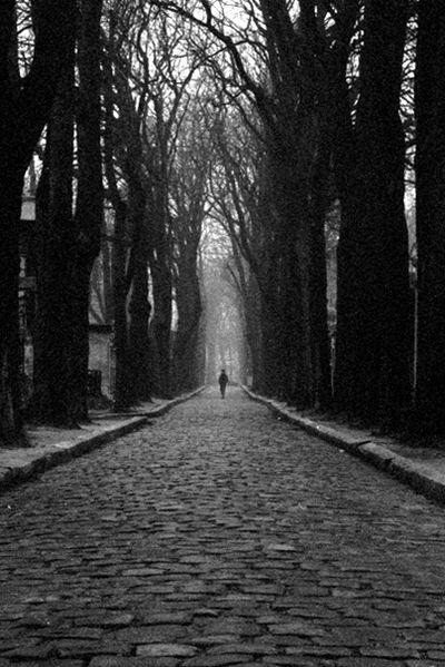 Pere LaChaise公墓的照片(由Lothar Streidle拍摄),在小说期间举行了两次葬礼。