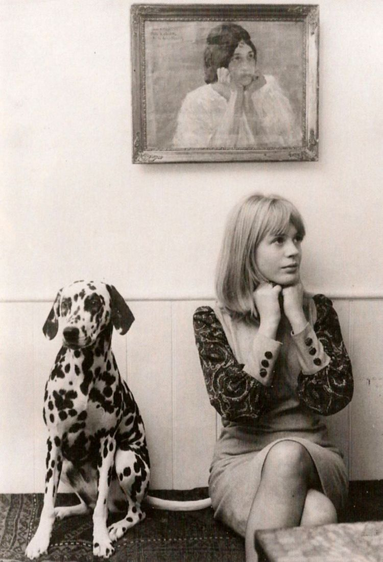 Marianne Faithfull与她的dalmation,1964年