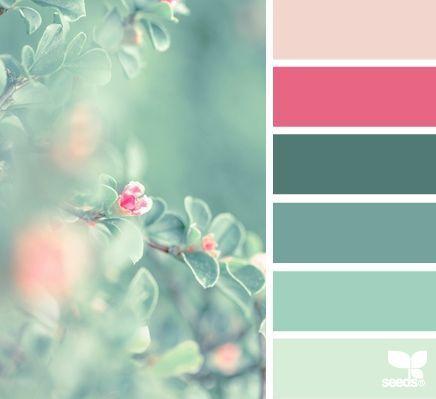 自然色调|设计种子#color