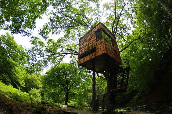 treehouses by takashi kobayashi, japan