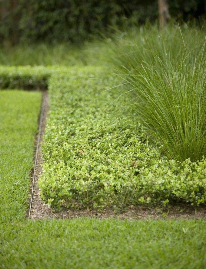 金属景观磨边是花园的黑色小礼服:优雅,坚固而低调,量身定做,永不过时。长期以来,专业园艺师的设计秘诀在于,金属已经进入了业余家庭花园,提供了一个简洁实用的解决方案,以保持植物和材料的安全。