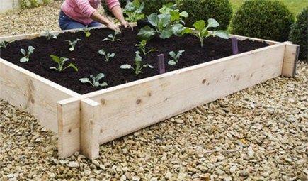 了解如何构建一个简单的凸起床,只需三步即可种植自己的蔬菜。