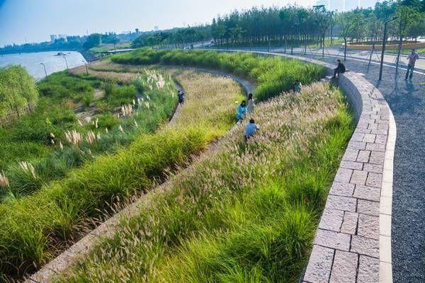 梯田湿地 -  Google搜索