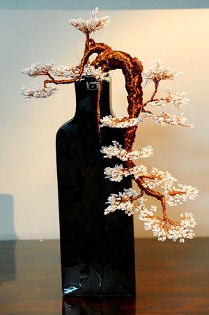 盆景艺术#bonsai