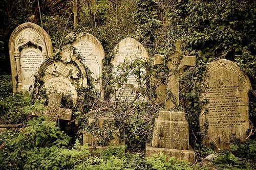 海格特公墓(东),伦敦,英国。点击这里查看这个地方的其他镜头。