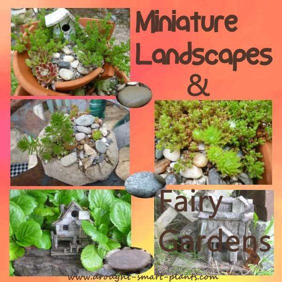 微型景观的范围从小村庄和铁路,完整的小灌木和树木,仙女花园在碗,盆景和盆景