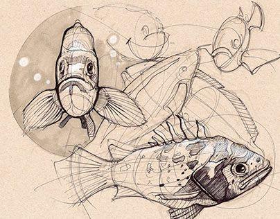 达罗王的鱼类研究。