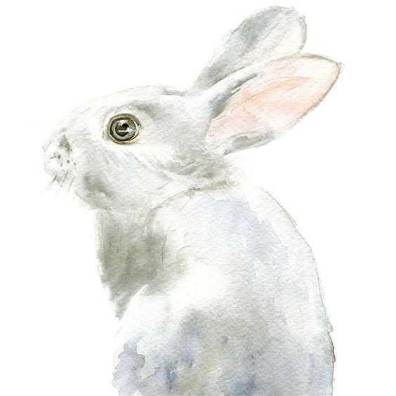 原始的水彩绘画艺术例证老鼠伞小兔雨图片