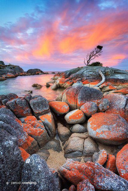 澳大利亚塔斯马尼亚Binalong湾火灾湾日落。 Facebook | 500px | Google+ |美术画廊|购买限量版打印|景观工作坊©Jarrod Castaing美术摄影。版权所有。所有图像均为专有财产,未经摄影师明确书面许可,不得以任何方式复制,下载,复制,传播,操纵或使用。请与我联系获取图像许可或在这里查看我的美术风景摄影和来自美国,英国,澳大利亚等等的限量版照片。