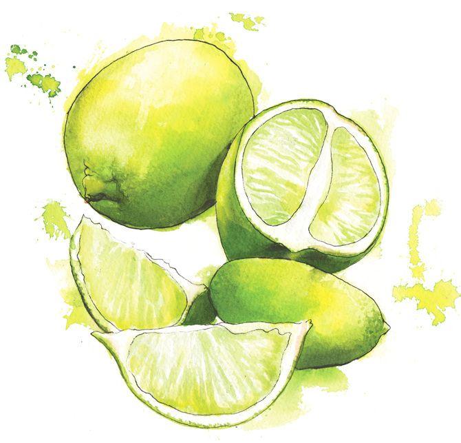 Fruit - Georgina Luck More