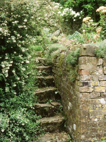 石头台阶,在旧砖墙旁边/重新设计toby设计