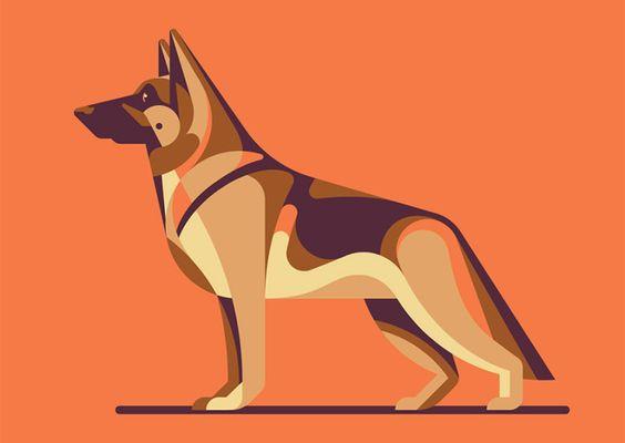 由位于洛杉矶的图形设计和插图工作室DKNG提供的一系列狗品种肖像。通过DKNG更多插图