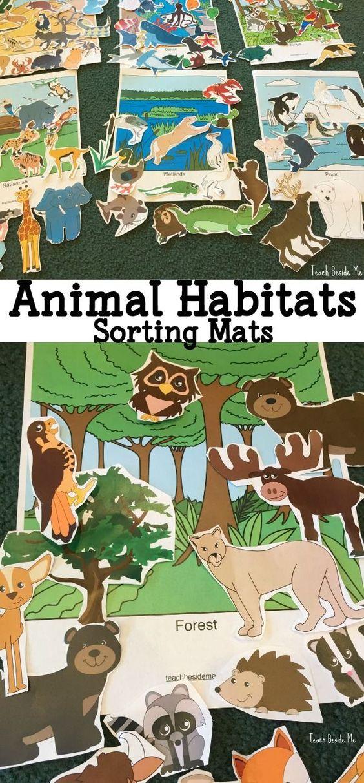 看看我们可打印的动物栖息地分类和玩垫学习,看看我们在水族馆的冒险,了解不同的栖息地。