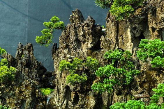 这是一个非常详细的微型盆景景观,但规模庞大。它由印度盆景集团Namaste制作。