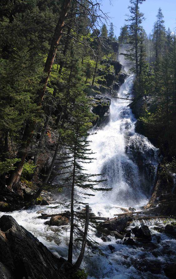 派恩溪瀑布,蒙大拿州。