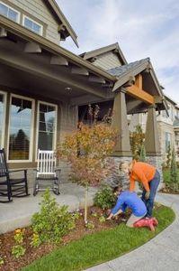 如何在房子周围景观:你从哪里开始?园林绿化改善了家居的美感,增强了遏制吸引力,并为院子增添了色彩和质感。如果你的家有很少的景观,决定从哪里开始可能会感到压力,但只需一些简单的提示,你就可以用各种植物改变你家的外观。无论...